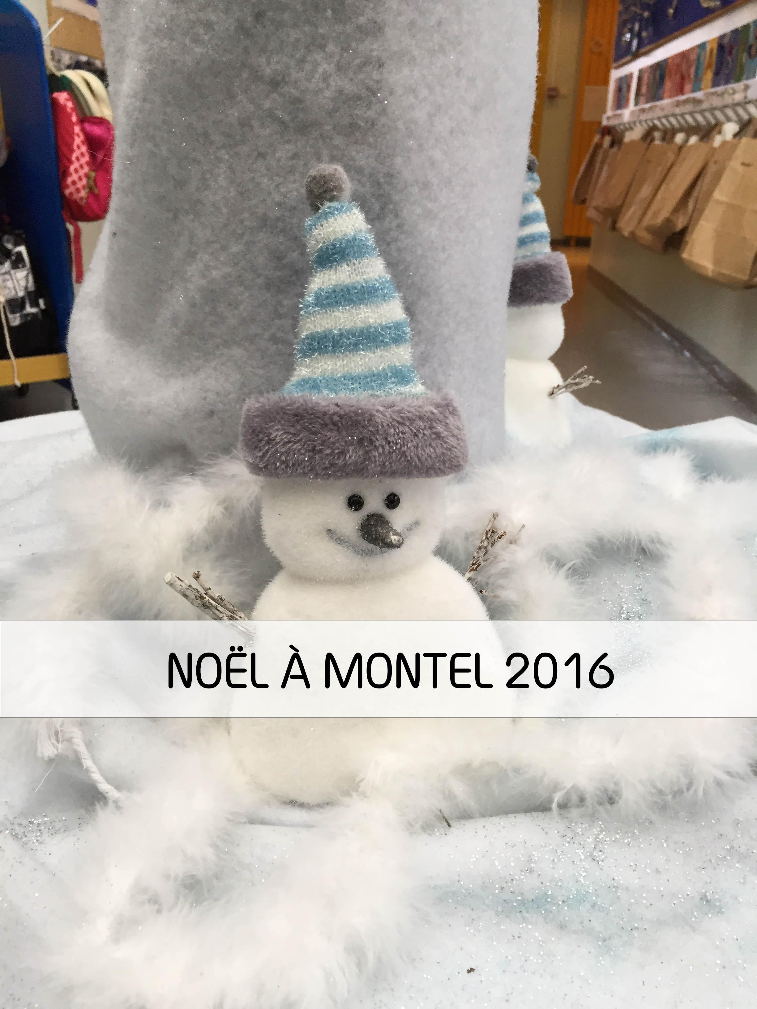 couv-montel
