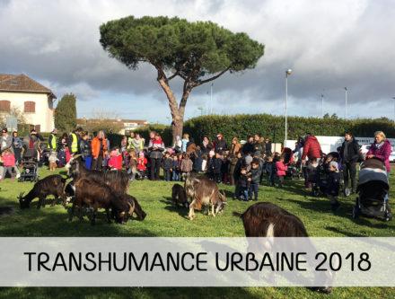 transhumance-urbaine-cugnaux-28-mars-2018